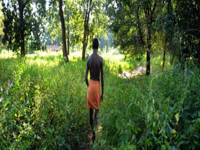 'Self-reliant', 'rich' people in India; Treasure of 8,000 medicinal plants to 'tribals'   'आत्मनिर्भर' भारतातली 'श्रीमंत' माणसं ; 8 हजार औषधी वनस्पतींचा 'आदिवासीं'कडे खजिना