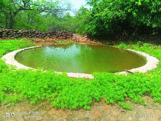 Abundant water in Phanasad Sanctuary; Artificial ponds for wildlife | फणसाड अभयारण्यात मुबलक पाणी; वन्यजीवांसाठी कृत्रिमतलाव