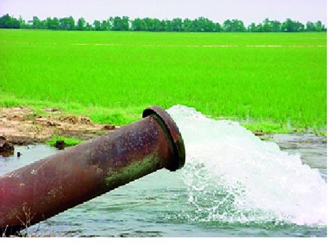 Tanker survived by watering plants   टँकरने पाणी देऊन जगवली झाडे । दुष्काळाचा सामना करण्यासाठी एक पाऊल