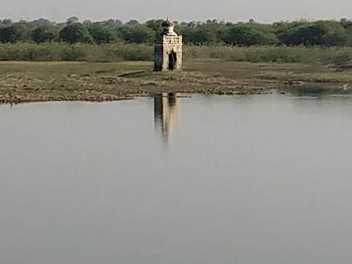 The water level in Vidharbha is serious | विदर्भात जलाशयांतील पाण्याची स्थिती गंभीर, वन्यप्राणी, पक्षांसमोरही जलसंकट