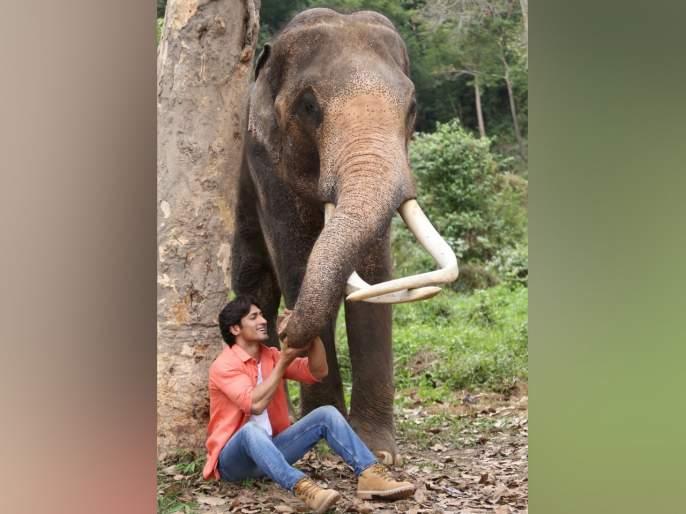 Vidyut Jamwal Interview of Junglee Movie | विद्युत जामवालला 'जंगली'च्या शूटिंगवेळी मिळाली 'ही' शिकवण