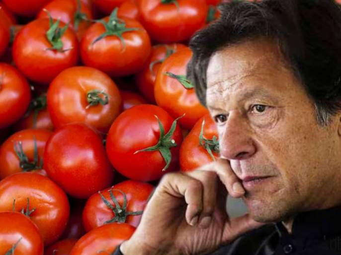 People in Pakistan unemployed by inflation; Tomatoes cross 400 | पाकिस्तानमधील जनता महागाईने बेजार; टोमॅटो 400 पार