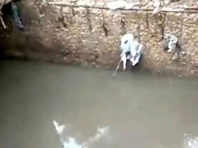 Shocking! 18-year-old girl died after falling into a drain | धक्कादायक! नाल्यात पडून १८ वर्षीय मुलीचा मृत्यू