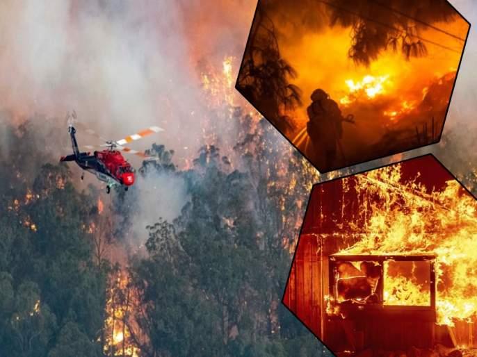 massive fire breaks out in california and oregon forests killing eight people   कॅलिफोर्नियाच्या जंगलात भीषण आग; 8 जणांचा मृत्यू, तब्बल 5 लाख लोक झाले बेघर