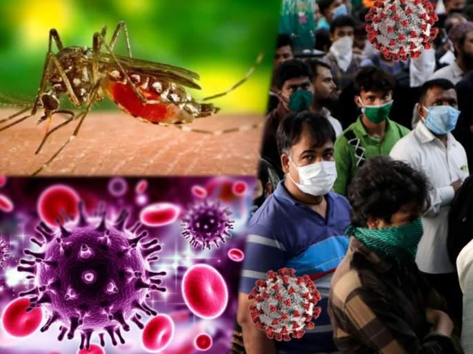 Dengue makes stronger against covid-19 virus immunity protect from coronavirus?   डेंग्यू झाल्यानंतर तयार झालेल्या एंटीबॉडी कोरोनाचा सामना करणार;संशोधनानंतर तज्ज्ञांचा दावा