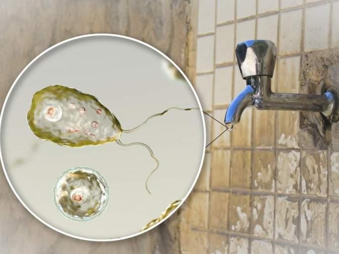 Human brain-eating amoeba found in water in US, issued warning instructions   पाण्यात सापडला मानवी मेंदू खाणारा जीवाणू, खबरदारीच्या सूचना जारी