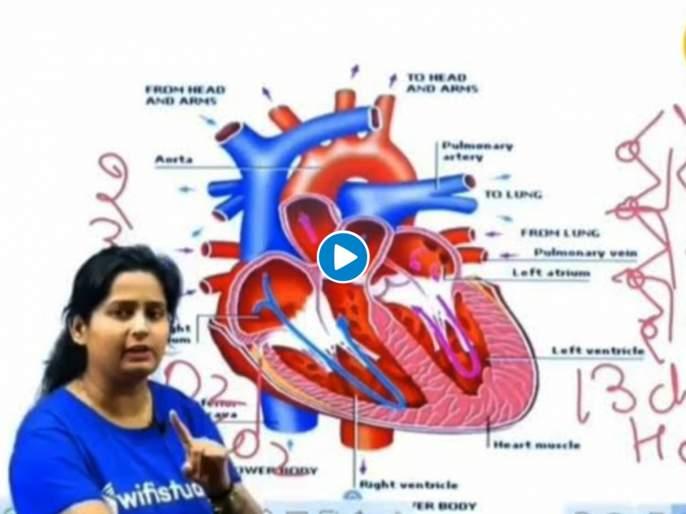 Teaching real function of heart gets distracted and talks about pyaar mohabbat watch viral video | हृदयाबद्दल शिकवत होती शिक्षिका, अन् अचानक सुरू झाल्या प्रेमाच्या गप्पा! सोशल मीडियावर व्हिडिओचा धुमाकूळ