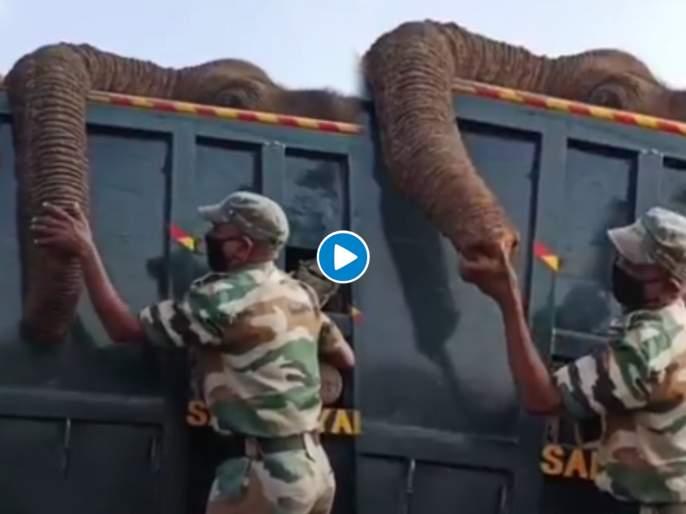 Watch emotional video of ranger who is crying for his elephant death | हृदयद्रावक! हत्तीला अखेरचा निरोप देताना जवानाला अश्रू अनावर, पाहा व्हिडीओ
