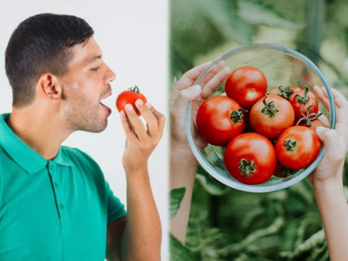Are you eating too many tomatoes 6 tomato side effects you must know about | किडनी स्टोनसह सांधेदुखीसाठी कारणीभूत ठरू शकतं टोमॅटोचं अतिसेवन; जाणून घ्या 'हे' दुष्परिणाम