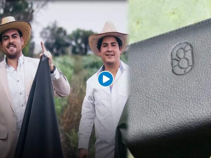 Two guys create leather from cactus will save 1 billion animals killed for fashion | भारीच! या दोघांनी निवडुंगापासून बनवलं लेदर; फॅशनेबल वस्तूंसाठी मारल्या जाणाऱ्या १० लाख प्राण्यांना वाचवता येणार