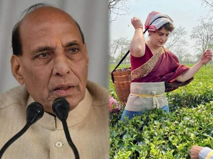 """Assam Assembly Election 2021 Rajnath Singh addresses rally in targeted Congress Priyanka Gandhi   """"जे 'चायवाला' म्हणून पंतप्रधानांची खिल्ली उडवत होते, तेच आज चहापत्ती खुडत आहेत"""", भाजपाचा सणसणीत टोला"""