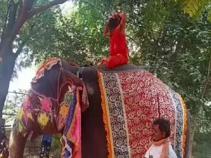 yoga guru baba ramdev fall from elephant during yog? | हत्तीवर बसून योग करताना बाबा रामदेवांचा तोल गेला अन्..., व्हिडीओ व्हायरल