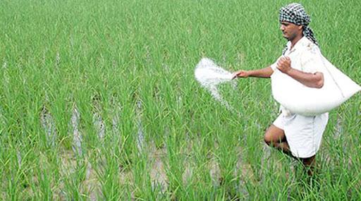 Urea will reach the farmers, information of Satish Patil   शेतकऱ्यांना बांधावर पोहोच होणार युरिया, सतीश पाटील यांची माहिती