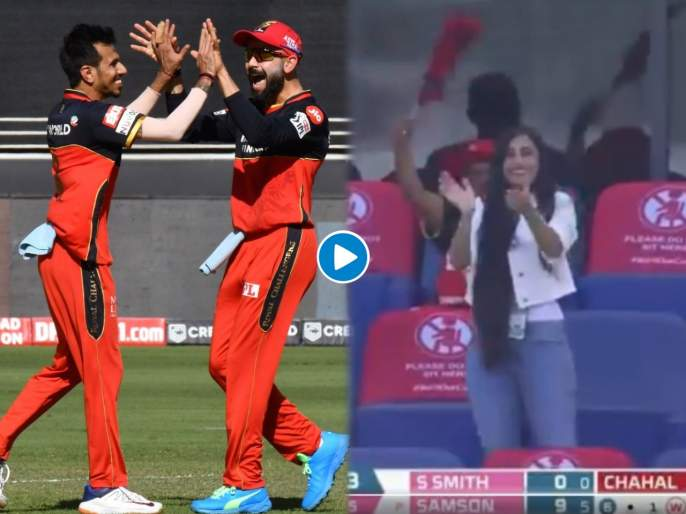 RR vs RCB Latest News : Yuzvendra Chahal's Fiance Dhanashree Verma Celebrates As Chahal Picks Two In Two Deliveries, Video | RR vs RCB Latest News : युजवेंद्र चहलनं घेतल्या सलग दोन विकेट् अन् धनश्री वर्माचं सेलिब्रेशन, Video
