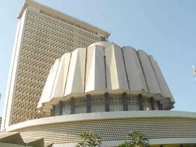 Cancellation of multi-member ward system in municipal councils; Cabinet meeting approved | नगरपरिषदांमध्ये बहुसदस्यीय प्रभाग पद्धत रद्द; मंत्रिमंडळाच्या बैठकीत मान्यता