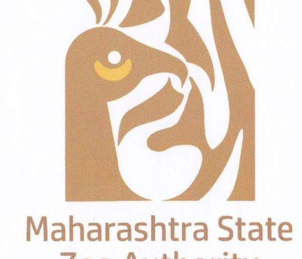 Maharashtra state Zoo Authority becoming White Elephant   महाराष्ट्र प्राणिसंग्रहालय प्राधिकरण ठरतोय पांढरा हत्ती