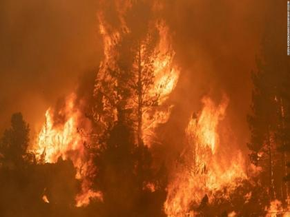 Turkey battles wildfires for six days in coastal resorts | Turkey battles wildfires for six days in coastal resorts