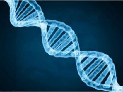Study identifies gene behind an unusual form of Cushing's Syndrome   Study identifies gene behind an unusual form of Cushing's Syndrome