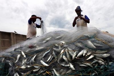 Don't move Indian Marine Fishermen Bill: Stalin to PM   Don't move Indian Marine Fishermen Bill: Stalin to PM