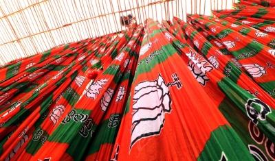 It's a saffron surge in Gujarat's six civic bodies   It's a saffron surge in Gujarat's six civic bodies