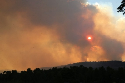 Israel mulls calling for int'l help to curb raging wildfire   Israel mulls calling for int'l help to curb raging wildfire