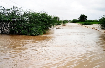 Maha flood situation eases, toll climbs to 192, 25 still missing   Maha flood situation eases, toll climbs to 192, 25 still missing