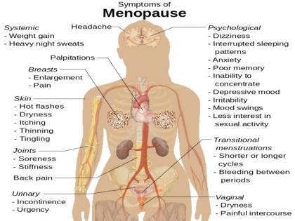 Blood test to predict menopause with better accuracy | Blood test to predict menopause with better accuracy