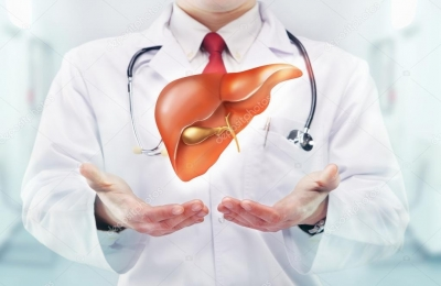 How excess sugar consumption causes fatty liver   How excess sugar consumption causes fatty liver