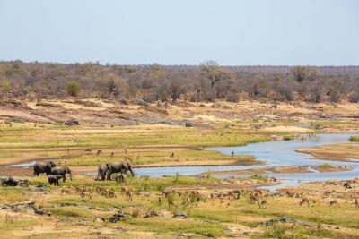 S.Africa beefs up security at Kruger National Park | S.Africa beefs up security at Kruger National Park