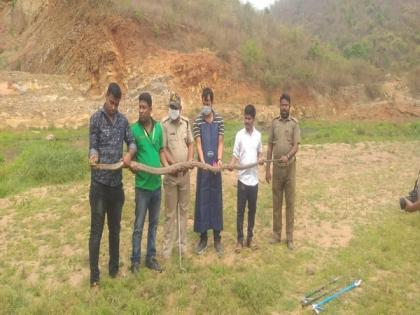 King cobra rescued from Odisha village, later released in forest   King cobra rescued from Odisha village, later released in forest