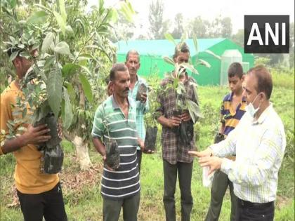 J-K: Udhampur's Horticulture Department organises skill development program for unemployed youth, farmers | J-K: Udhampur's Horticulture Department organises skill development program for unemployed youth, farmers