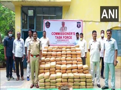Ganja worth Rs 27.3 lakh seized in Andhra Pradesh's Vijayawada, two arrested   Ganja worth Rs 27.3 lakh seized in Andhra Pradesh's Vijayawada, two arrested