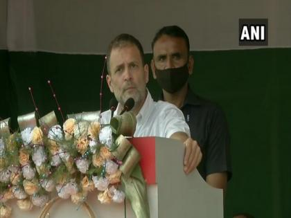 BJP promised Rs 365 daily to tea workers, paid Rs 167, says Rahul Gandhi promising five things to Assam residents   BJP promised Rs 365 daily to tea workers, paid Rs 167, says Rahul Gandhi promising five things to Assam residents