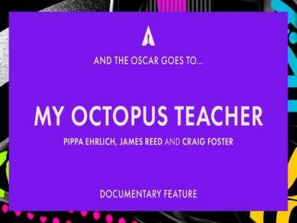 Oscars 2021: 'My Octopus Teacher' wins 'Best Documentary Feature'   Oscars 2021: 'My Octopus Teacher' wins 'Best Documentary Feature'