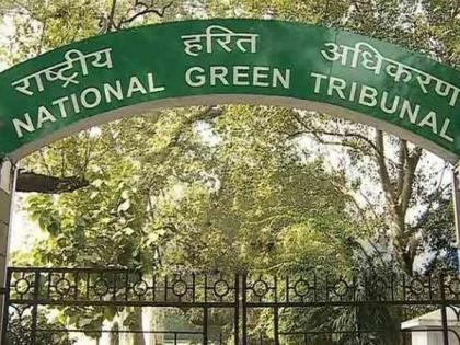 No encroachment can be allowed on forest land, NGT tells Delhi govt   No encroachment can be allowed on forest land, NGT tells Delhi govt