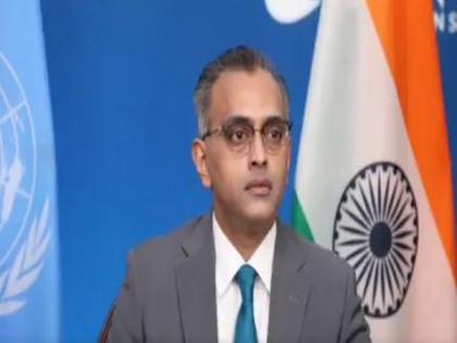 Terrorism in Syria increasing due to external actors: India at UN   Terrorism in Syria increasing due to external actors: India at UN