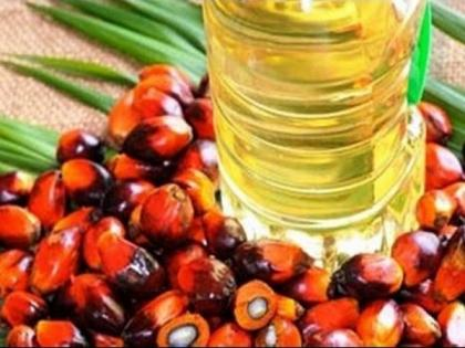 Centre reduces duty on crude palm oil by 5 pc to reduce edible oil prices   Centre reduces duty on crude palm oil by 5 pc to reduce edible oil prices