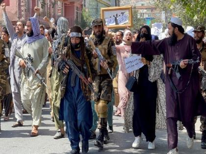 US senators urge Blinken to designate Taliban as foreign terrorist organisation   US senators urge Blinken to designate Taliban as foreign terrorist organisation