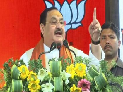 All political parties including Congress are restricted to just dynasty politics: Nadda | All political parties including Congress are restricted to just dynasty politics: Nadda