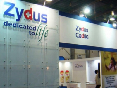 Zydus Cadila vaccines to begin commercial rollout from mid-Sep   Zydus Cadila vaccines to begin commercial rollout from mid-Sep