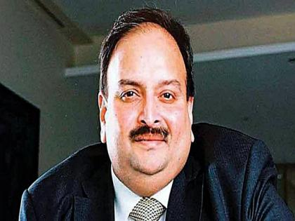 Choksi's 'abduction' int'l crime, brought shame to Antigua and Barbuda: Antiguan oppn party leader | Choksi's 'abduction' int'l crime, brought shame to Antigua and Barbuda: Antiguan oppn party leader
