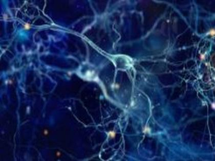 Nanoparticles create heat from light to manipulate electrical activity in neurons, study finds   Nanoparticles create heat from light to manipulate electrical activity in neurons, study finds