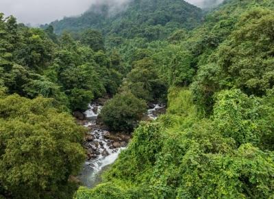 Kerala announces Caravan Tourism policy   Kerala announces Caravan Tourism policy