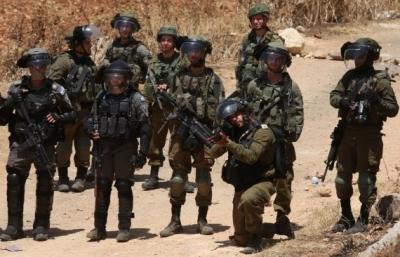 Palestinian diplomat slams 'inaction' towards Israel's violations   Palestinian diplomat slams 'inaction' towards Israel's violations