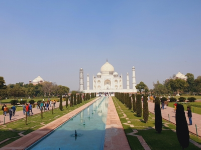 Assaulted by humans & nature, Taj needs better care | Assaulted by humans & nature, Taj needs better care