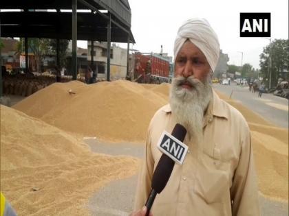 Ludhiana farmers fear crop damage due to delay in procurement | Ludhiana farmers fear crop damage due to delay in procurement