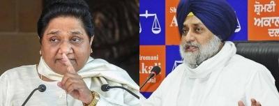 Akali Dal, BSP stitch alliance in Punjab | Akali Dal, BSP stitch alliance in Punjab