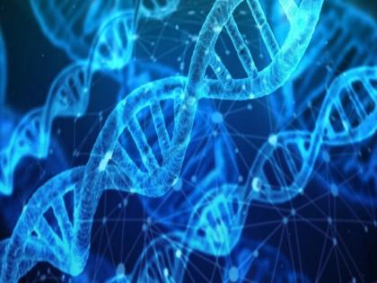 Genetics may determine wound infection, healing   Genetics may determine wound infection, healing