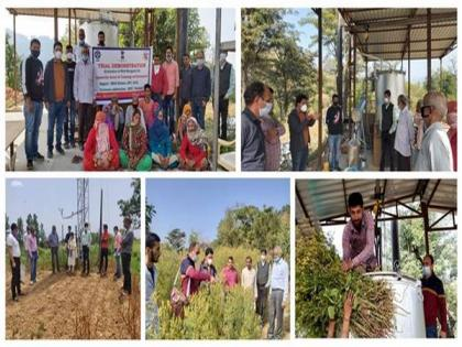 Marigold oil production doubles income of farmers in Himachal's Chamba   Marigold oil production doubles income of farmers in Himachal's Chamba