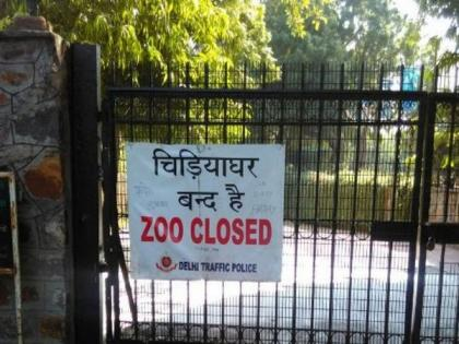 Delhi zoo sends samples of some animals for COVID-19 testing at IVRI Bareilly   Delhi zoo sends samples of some animals for COVID-19 testing at IVRI Bareilly